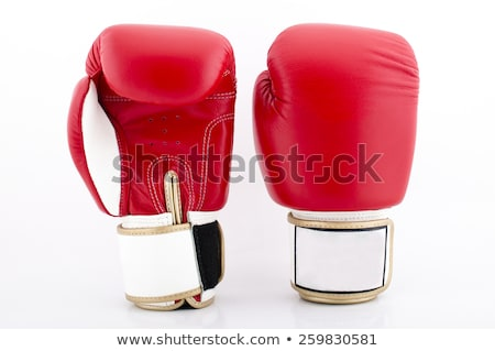 leather gloves of red-white colour for boxing Stock photo © acidfox