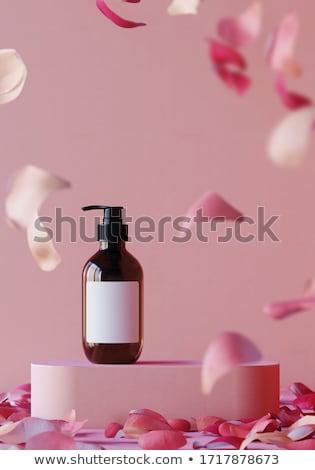 коллекция роз баннер стиль дизайна Элементы Сток-фото © ElaK