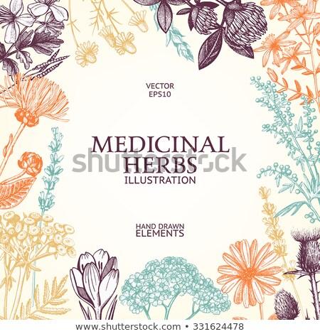 injekciós · tű · kéz · rajz · gyógyszer · ikon · kék - stock fotó © netkov1