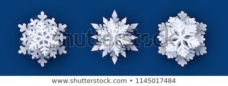 szett · hópelyhek · hó · sziluett · fehér · karácsony - stock fotó © alexmakarova