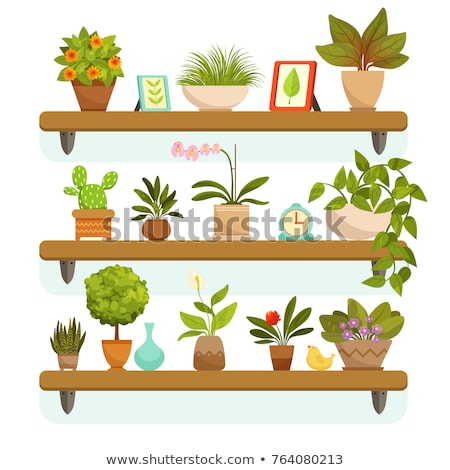 Stock photo: stand for flowerpots furniture and cactus vector illustration