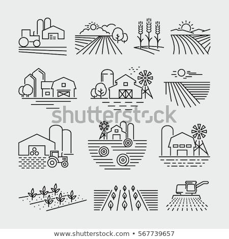 combine harvester line icon stock photo © rastudio