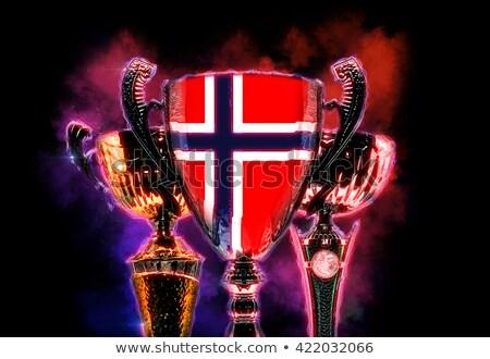 Trofeo Cup bandiera Norvegia illustrazione digitale Foto d'archivio © Kirill_M