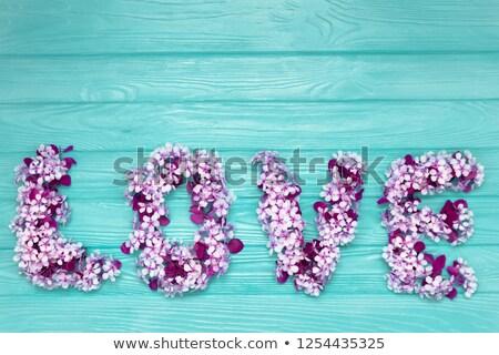 Słowo lata wiśni niebieski jasnoniebieski Zdjęcia stock © szabiphotography