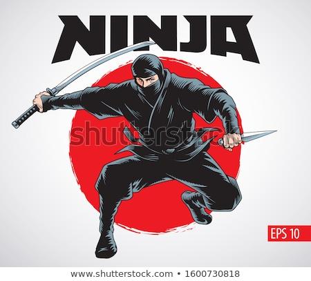 desenho · animado · ninja · vetor · gráfico · arte - foto stock © vector1st