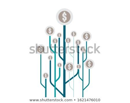 vetor · dourado · moedas · frutas · dólares - foto stock © rastudio