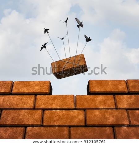 bird builds brick wall Stock photo © adrenalina