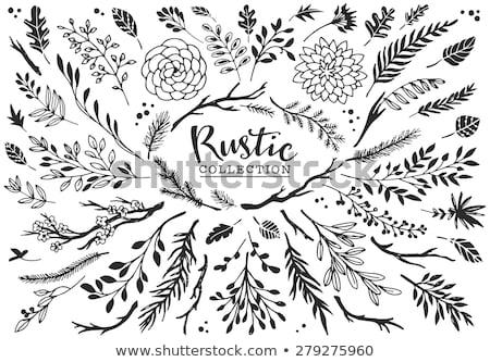 Stilizate siluete decorativ plante vopsit Imagine de stoc © blackmoon979