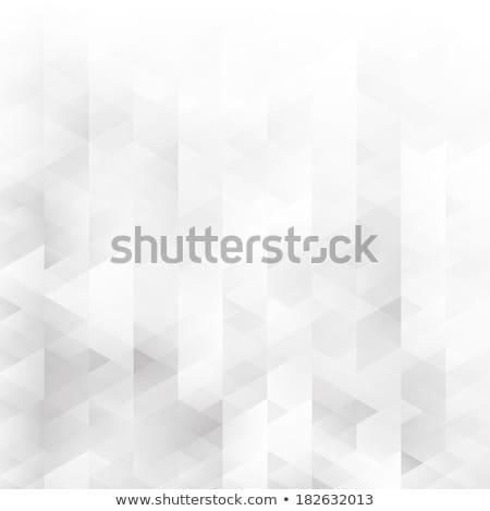 Soyut tek renkli fraktal model vektör siyah beyaz Stok fotoğraf © TRIKONA