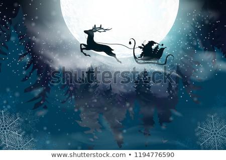 Zimą krajobraz Święty mikołaj sanki renifer christmas Zdjęcia stock © derocz