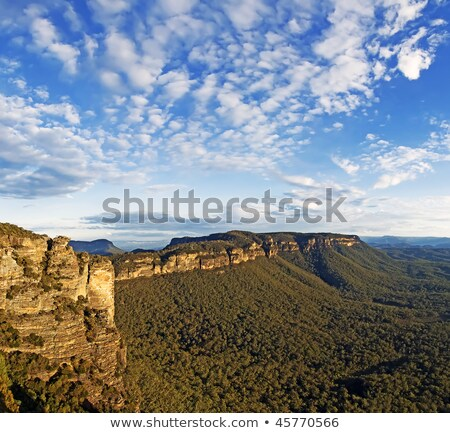 Views over the Jamison Valley Blue Mountains Australia Stock photo © lovleah