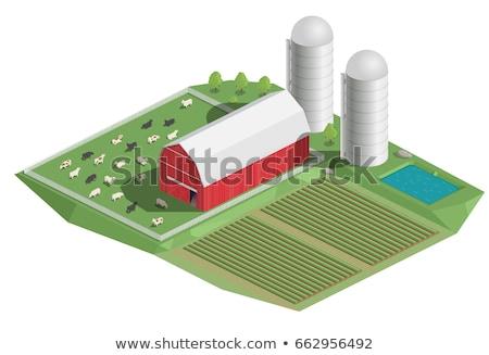 Természetes gazdálkodás izometrikus 3D elemek mezőgazdasági Stock fotó © studioworkstock