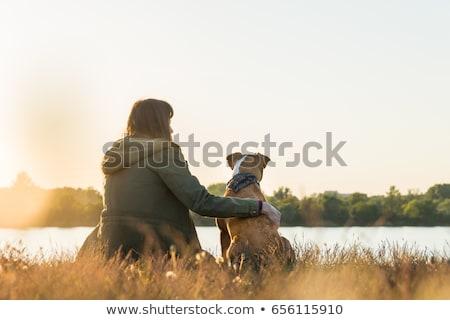 女性 座って 湖 犬 ヨーロッパ チームワーク ストックフォト © IS2
