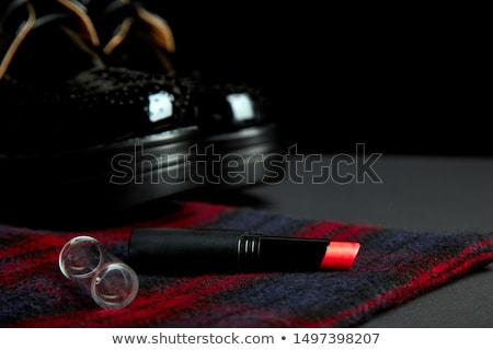 Outono elegante vermelho listrado casaco preto Foto stock © Illia