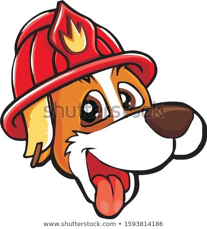 Desenho animado sorridente bombeiro cachorro cão animal Foto stock © cthoman