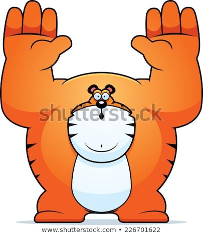 Cartoon tigre ilustración gato animales gráfico Foto stock © cthoman