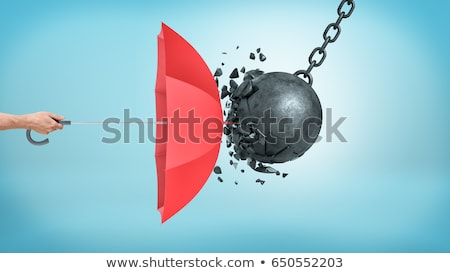 Insurance Protection Stock photo © Lightsource