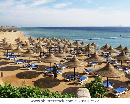 playa del Carmen mexico Mayan Riviera beach stock photo © lunamarina