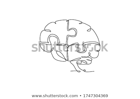 Game which of the drawing  one line  stock photo © Olena