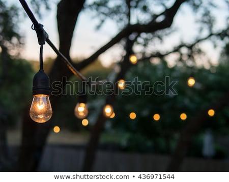 corda · vintage · luzes · fora · noite · foco - foto stock © ruslanshramko