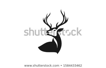Szarvas logo vektor szimbólum ikon terv Stock fotó © blaskorizov