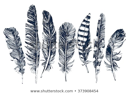 Writing Feather Hand Drawn Sketch Icon Stock photo © mart