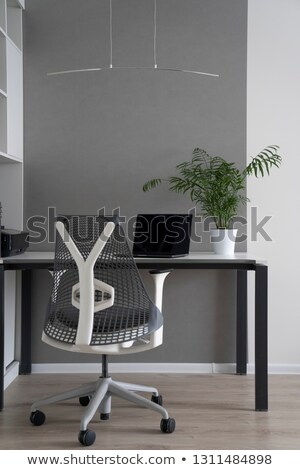 company office corner with a modern desk orthopedic chair up to date computer and green flowerpot stock photo © artjazz