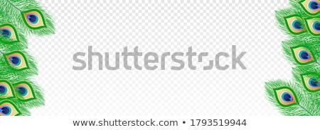 販売 バナー 孔雀 羽毛 幸せ 背景 ストックフォト © SArts