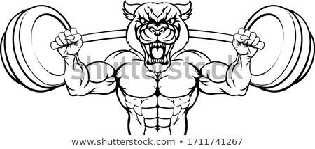 Párduc kabala súlyemelés test építész állat Stock fotó © Krisdog