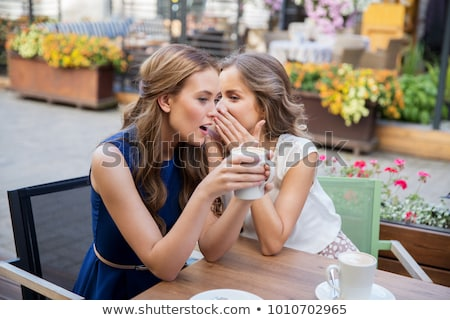 Twee vrouwen praatjes vrouwen klanten pop art retro Stockfoto © rogistok
