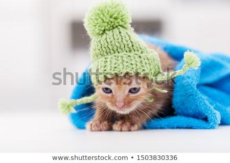 Cute bain roulé serviette laine Photo stock © ilona75