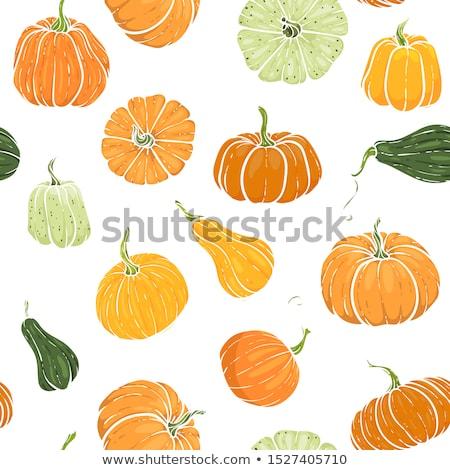 rajz · aranyos · firkák · kézzel · rajzolt · boldog · hálaadás - stock fotó © balabolka