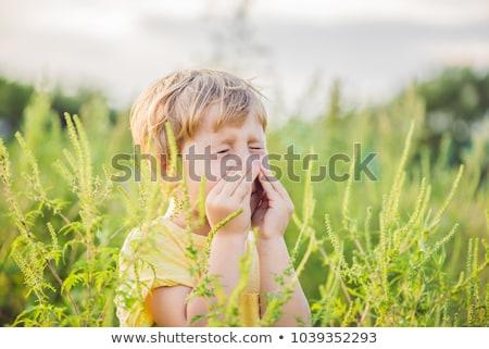 Nino alergia mujer hierba fondo verde Foto stock © galitskaya