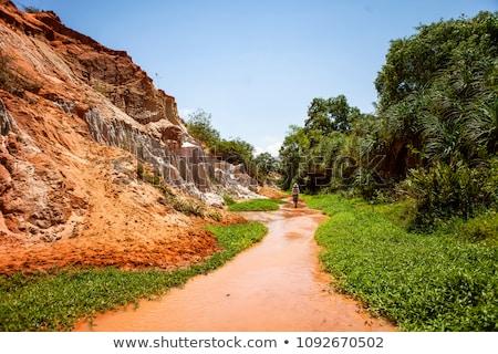 Czerwony kanion południowy Wietnam charakter pustyni Zdjęcia stock © galitskaya
