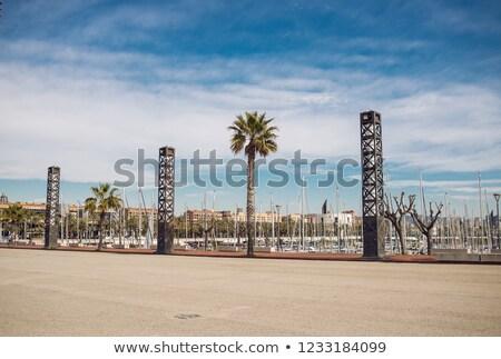 Barcelona pálmafák lámpások kék ég város utca Stock fotó © ShustrikS