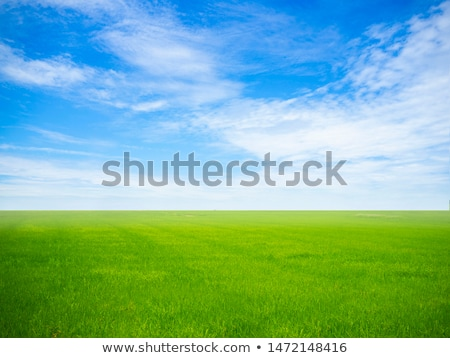 White clouds in the sky above country landscape. Stock photo © artjazz