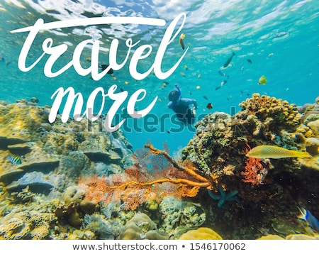 TRAVEL MORE concept Happy man in snorkeling mask dive underwater with tropical fishes in coral reef  Stock photo © galitskaya