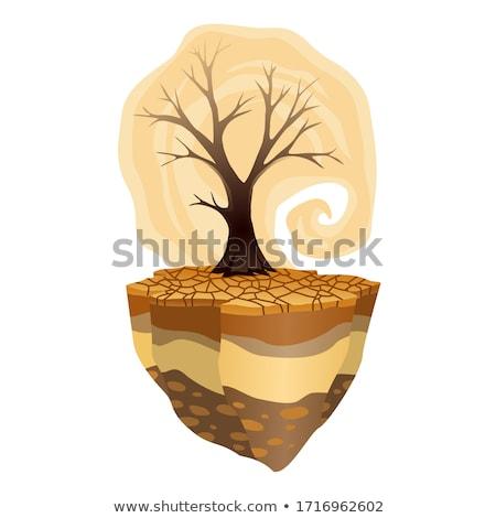 Aarde opwarming van de aarde droogte waarschuwing ecologie poster Stockfoto © designer_things