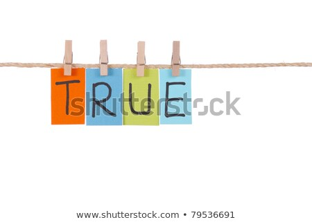 True, Wooden peg  and colorful words Stock photo © Ansonstock