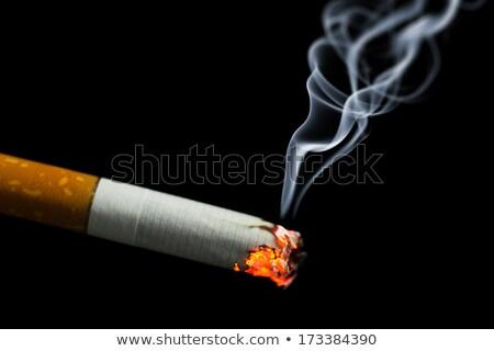 сжигание · сигару · фотография · коричневый · стекла - Сток-фото © lizard