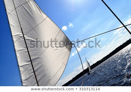 Blue sky with clouds in contrary light. For background Stock photo © Traven