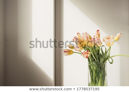 Сток-фото: тюльпаны · интерьер · стекла · ваза · красочный · цветы