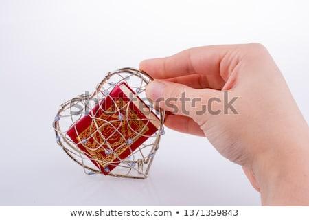 corazón · prisión · triste · Cartoon · detrás · ventana - foto stock © drizzd