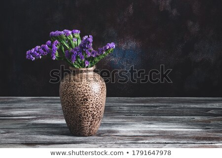 Lavanda natureza morta dois bronze metal tempero Foto stock © searagen