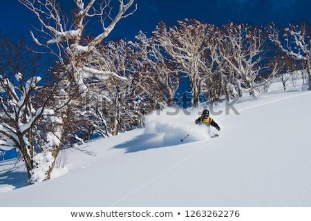 Skiën jonge man uit hemel sport sport Stockfoto © pkirillov