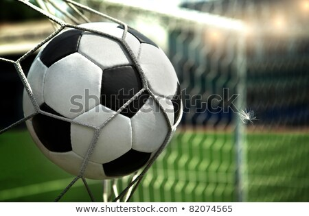 green and white soccer equipment stock photo © pcanzo
