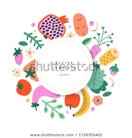 Vicces zöldségek vektor keret hajadon tárgy Stock fotó © pcanzo