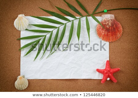 White Crumpled Paper Background With Palm Leave Zdjęcia stock © Artush