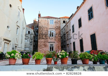 beautiful backyard in dubrovnik croatia stock photo © anshar