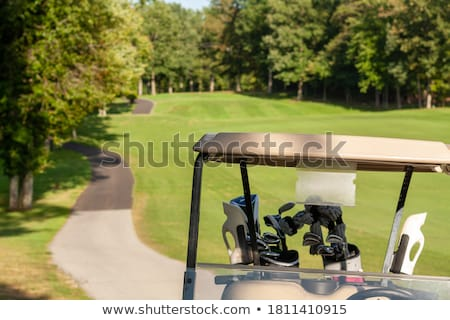 The old chair on the golf course Stock photo © CaptureLight
